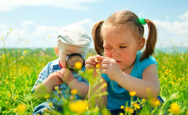 Toddlers studying yellow flowers with a magnifying glass